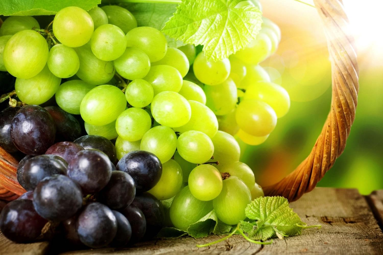 uso de la uva en cosmética